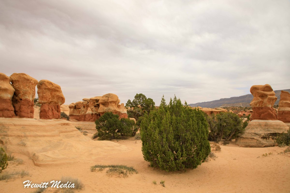 Guide to Devil's Garden in Grand Staircase – Escalante National Monument